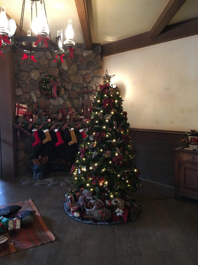 【開運】クリスマスで開運!!